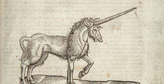 illustration of a unicorn